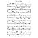 Akkordeon Groove Box Band 4